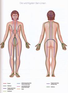 Sen-Linien am Körper gezeichnet